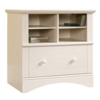 Bowery Hill 1 Drawer Lateral Wood File Cabinet in Antique ...