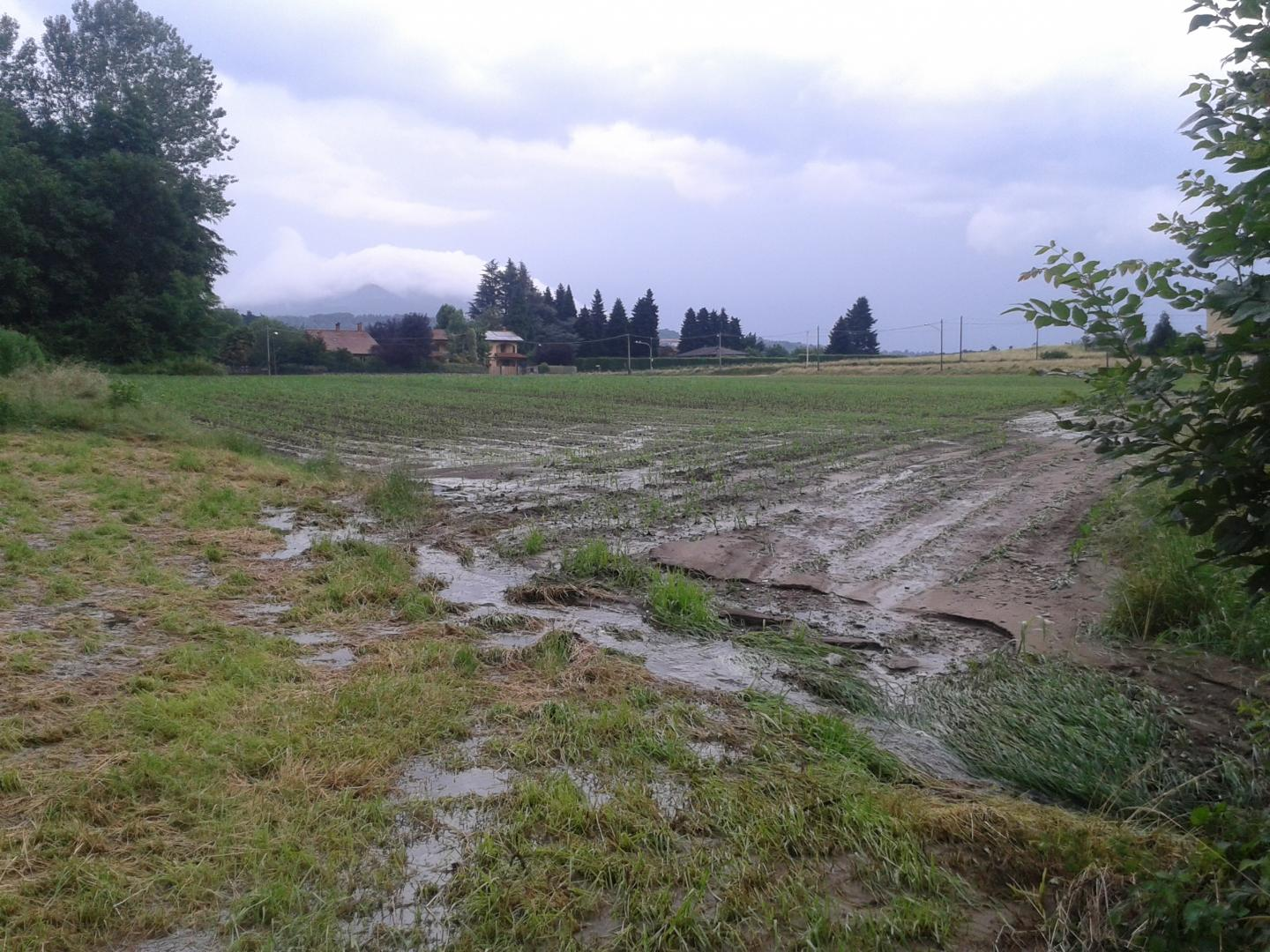 In Europe Soil Erosion May Not Reduce Atmospheric Carbon