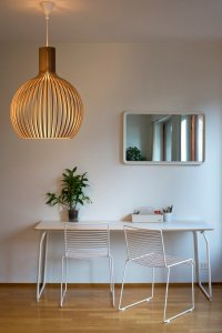 Secto Design Octo 4240 pendant, walnut | Finnish Design Shop