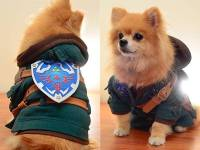 The Legend of Zelda Dog Costume Turns Your Pet Into Link ...