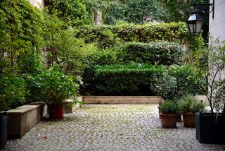 Jardin De Ville Conseils De Creation D39entretien Choix
