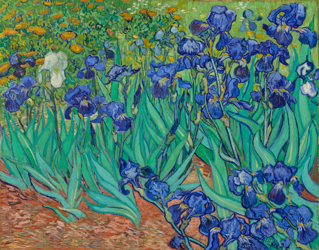 Arte Definition Francais Irises Getty Museum