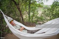 Couch Hammock Stock Photos and Pictures | Getty Images