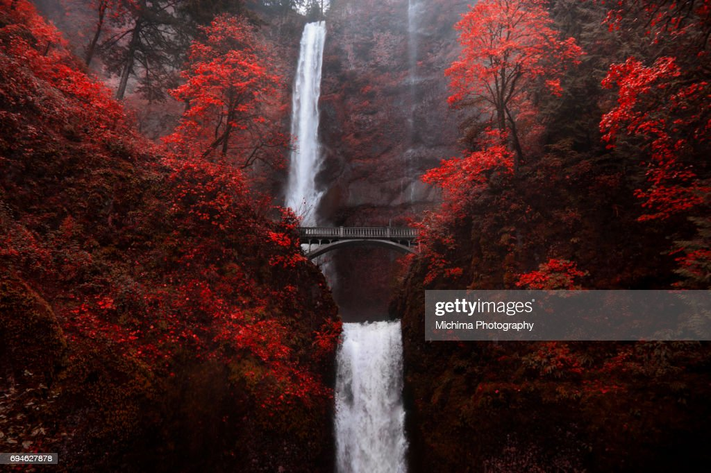 Multonomah Falls Wallpaper Columbia River Gorge Stock Photos And Pictures Getty Images