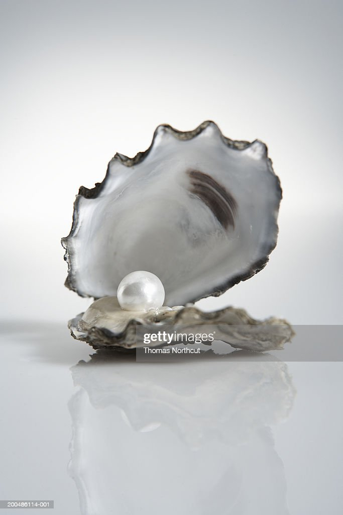 Limits Quotes Wallpaper Pearl Inside Oyster Shell Stock Photo Getty Images