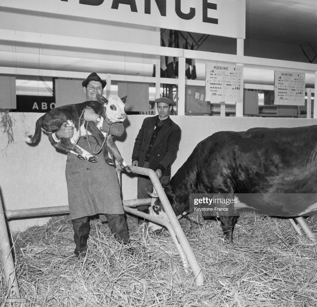 Le Salon De L Agriculture A Paris Salon De L Agriculture 1967 à Paris Pictures Getty Images