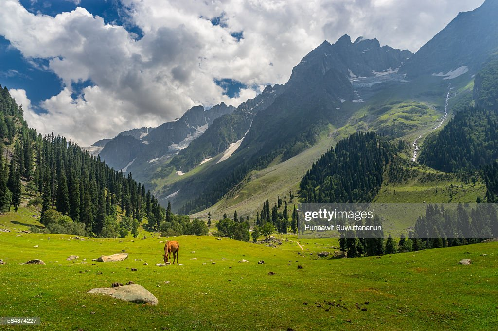 Urban Wallpaper Hd Kashmir Valley Stock Photos And Pictures Getty Images