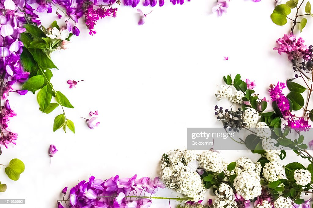 Cute Bordered Pastel Flower Wallpaper Fundo De Flores De Primavera Foto De Stock Thinkstock