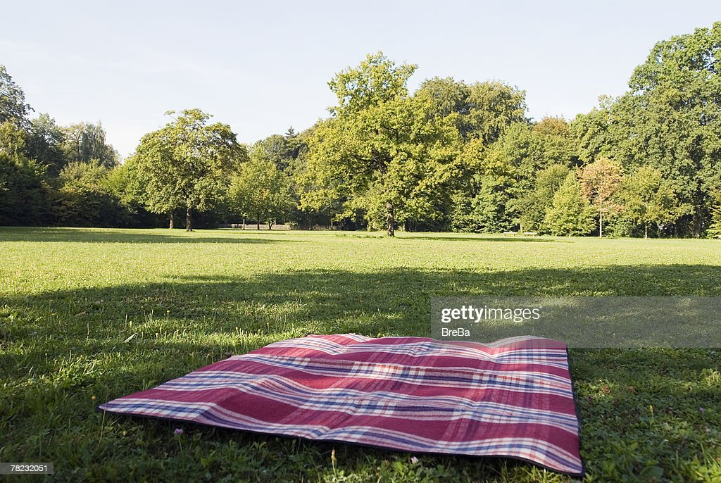 Picnic Blanket Stock Photos And Pictures Getty Images
