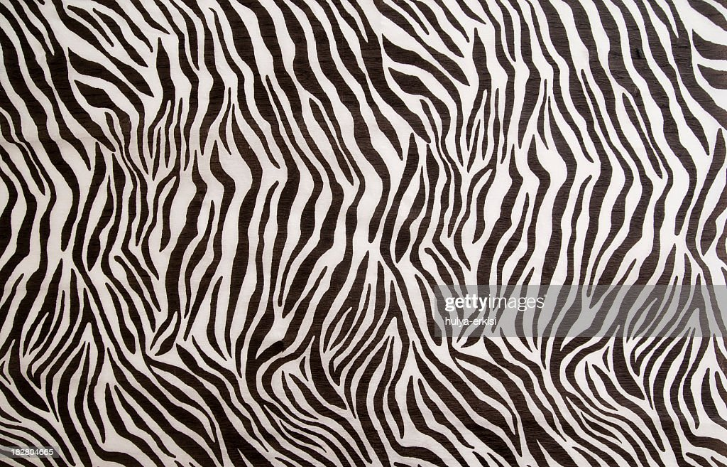 Leopard Animal Print Wallpaper Zebra Stock Photos And Pictures Getty Images