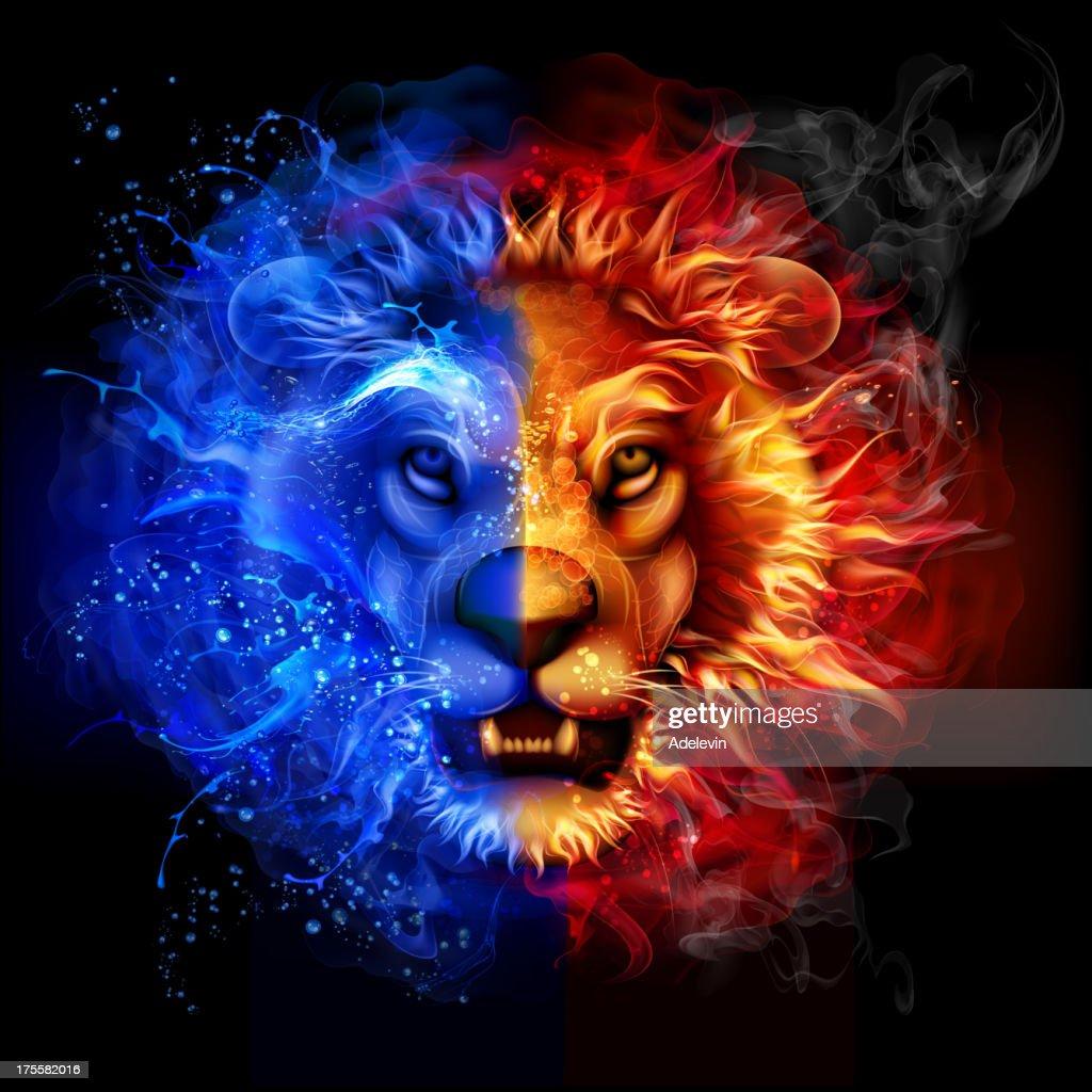 Fire Lion Hd Wallpaper Blue Lion Fire