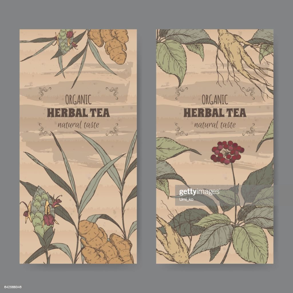 Ginseng In Deutschland Two Color Vintage Labels For Ginger And Ginseng Herbal Tea Stock
