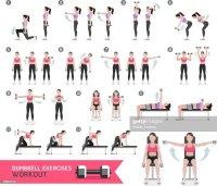 Frau Mit Hantel Training Fitness Und bungen Vektorgrafik ...
