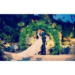 Small Crop Of Whitney Port Wedding