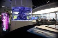 Aquarium... - Bloomberg L.P. Office Photo | Glassdoor