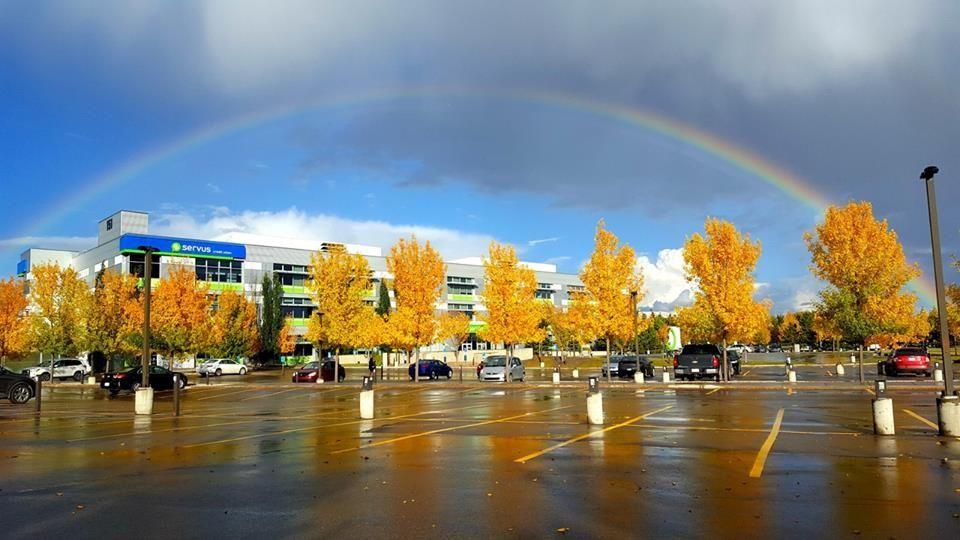 Rainbow over corporate centre - Servus Credit Union Office Photo
