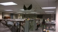 Halloween Office Decorations