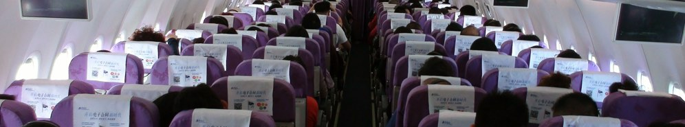 Delta Air Lines, Inc Flight Attendant interview questions Glassdoor
