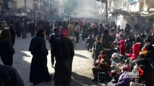 Hours after they began, evacuations in Aleppo halted
