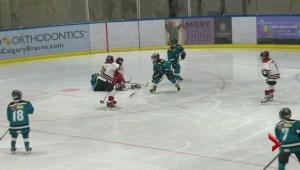 Esso Minor Hockey: January 13
