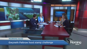 Gwyneth Paltrow takes food bank challenge, and fails according to some