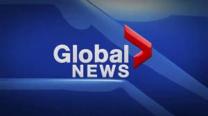 Global News at 5 Edmonton: Nov. 29