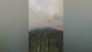 Wildfire burning near Mount Robson Park