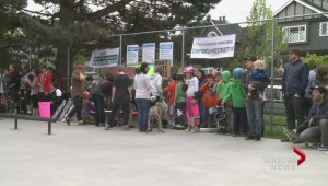 Rally to save skate park held in Mt. Pleasant