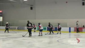 NHL alumni, local celebrities come together to play hockey for a good cause