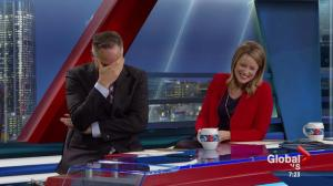 Morning News anchors can't stop laughing about love nibbles