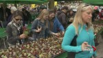 2015 Plant Sale held at VanDusen Gardens