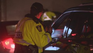 'It's very clearly and classically an impairing drug': Winnipeg police on driving while high on pot