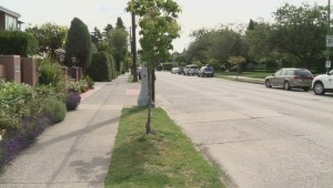 Posh Vancouver neighbourhood fights new walkway
