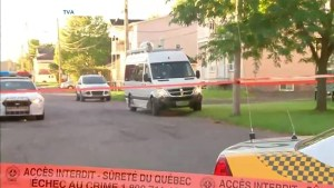 Police involved in fatal shooting of armed man