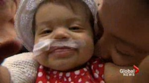 Effort to find a new liver for GTA eight-month-old draws hundreds of responses