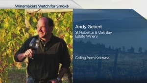 Winemakers in the Okanagan watch for smoke from nearby wildfires