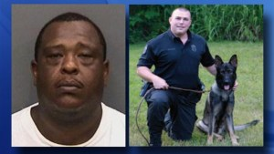 Tampa cop and his K9 partner set on fire during violent arrest