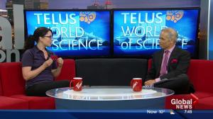 Summer events at the Telus World of Science