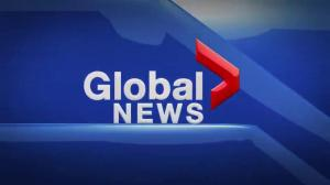 Global News at 5 Edmonton: March 29