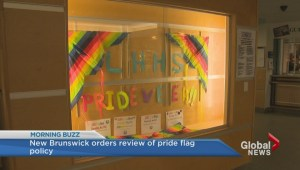 Petition asks N.B. Government to allow schools to raise pride flag