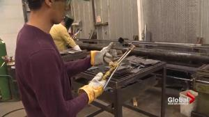Saint John private welding company owner says free tuition program hurting prospective students