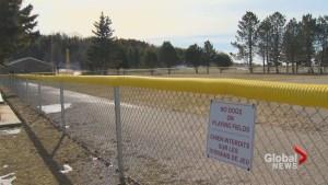 Saint John council to reexamine sport field fee increase