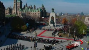 Remembrance Day: Canadians honour vets in record numbers