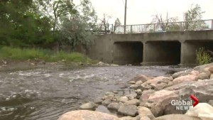 New stormwater taxes being considered in the GTA