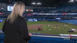 Long-time Toronto Blue Jays employee says working for the team is a 'dream job'