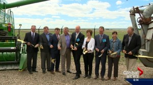 New wheat breeding facility opens near Saskatoon