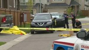 Calgary Police investigate after woman found dead in southeast neighbourhood