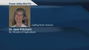 H5 avian flu found on two BC farms