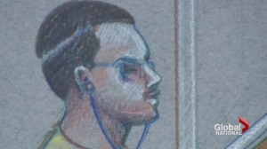 Luka Magnotta trial: Stunning revelation on opening day