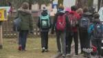 More mumps cases in Toronto schools